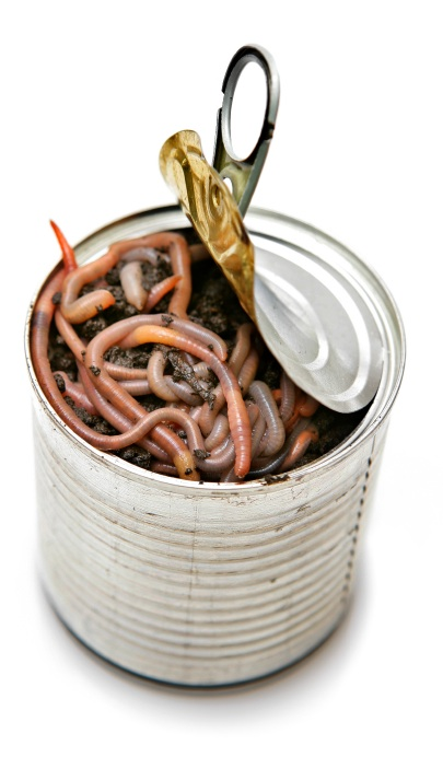ICANN opens up a can of worms