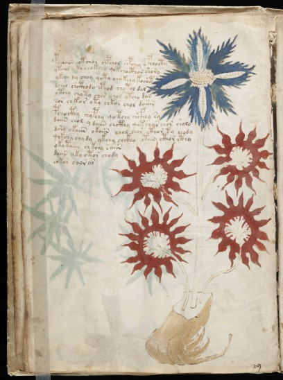 A linguistics professor in the UK believes he's decoded parts of the Voynich Manuscript.