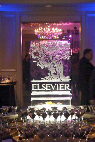 An Elsevier ice sculpture. No comment. No, really, no comment. Image via Flickr.