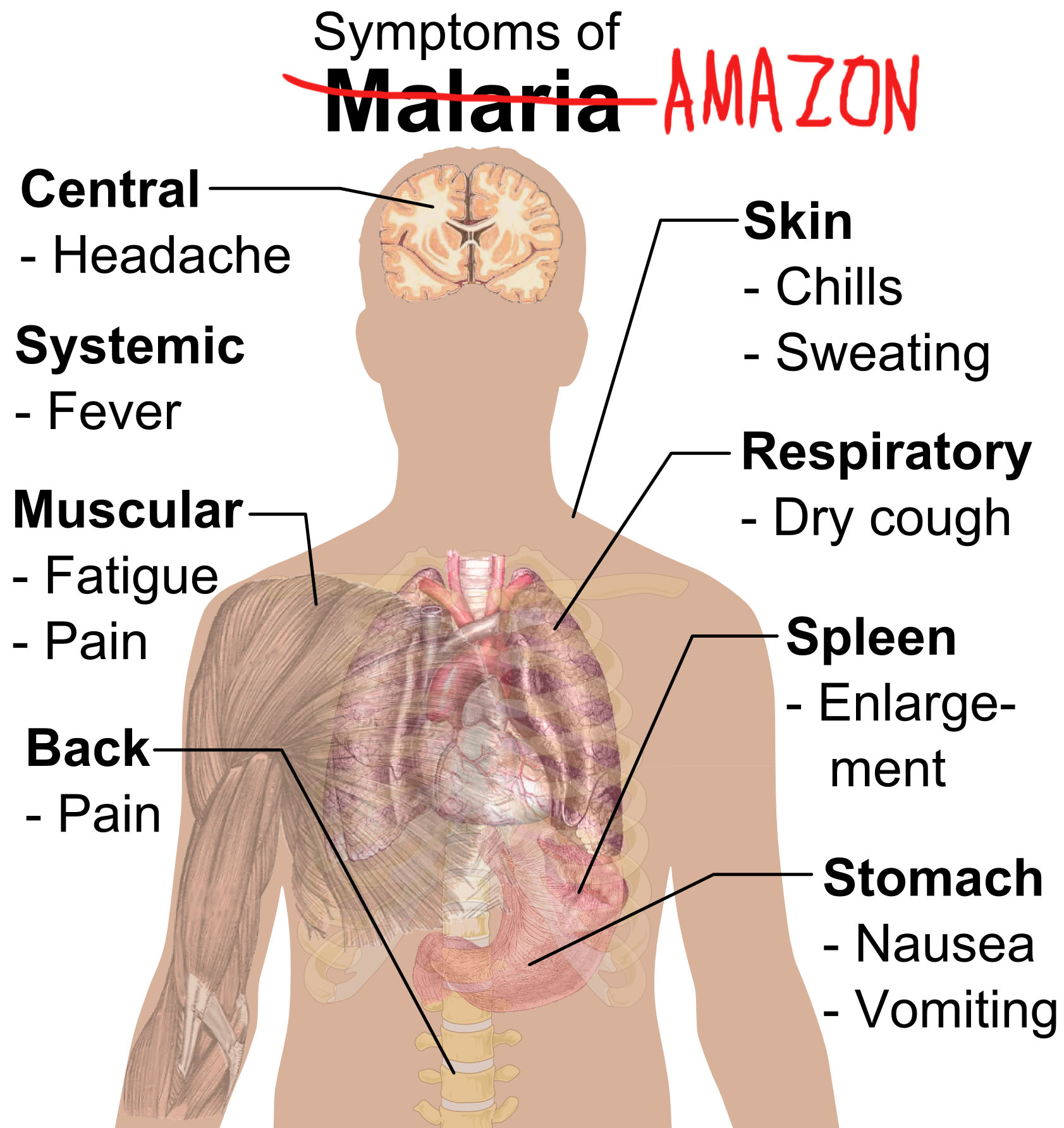 David Mitchell (not that one, the other one) eloquently compares Amazon to malaria, pimps