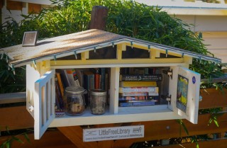 The Little Free Library in question.