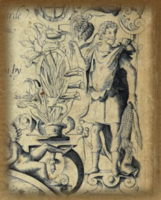 Image taken from Country Life's website